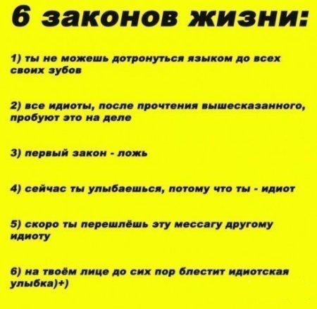 6 законов жизни:)