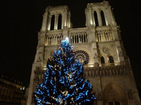 Рождественские деревья
