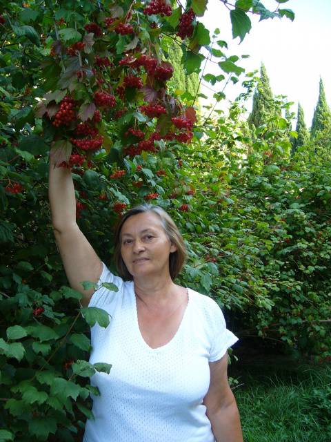 Светлана Ивановна Ногаткина (Лысенко)