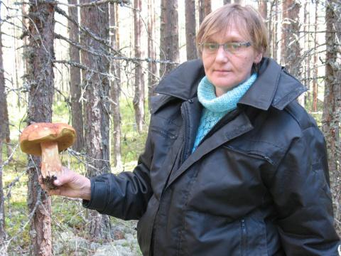 Черепашка Николаева