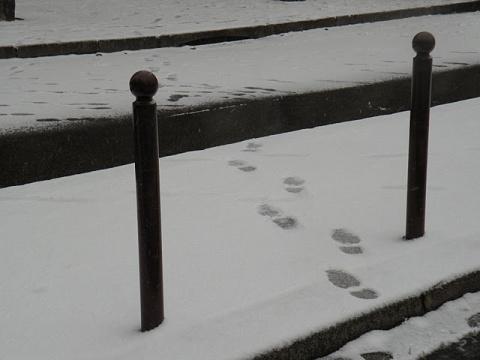 Первый снег, зима 2009-- 2010