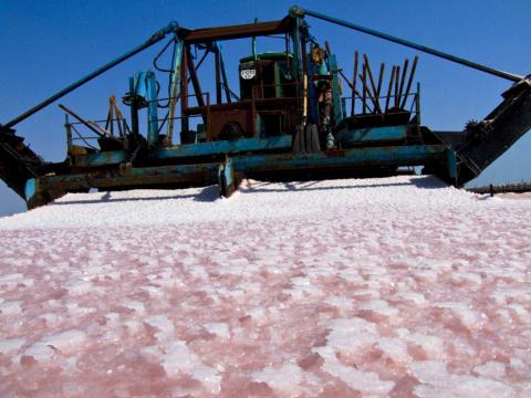 Уборка соли комбайном.