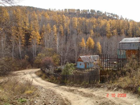 Осенний лес Забайкалья