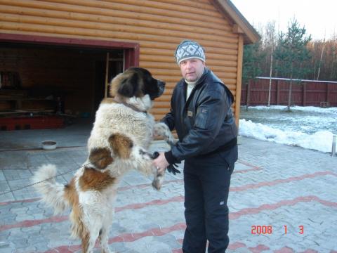 Алексей Илькаев