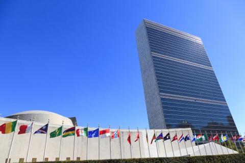 Глава расследования о химатаках в Сирии обвинил Совбез ООН в давлении