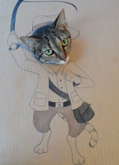 Оставили кота соседу всего н…