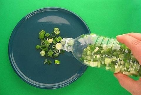 Как хранить зеленый лук в хо…