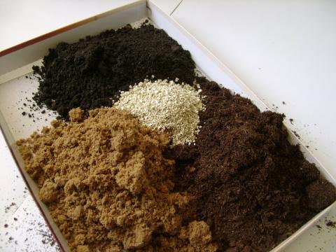 Октябрь - пора готовить почву для рассады!