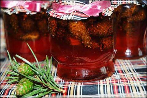Сосновый мёд - целебное народное средство. Сколько переваривается пища