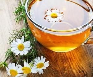 Как вылечить аменорею с помощью средства из ромашки и петрушки