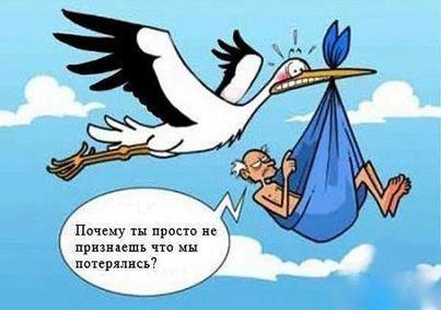 Если ласточки низко летают, …