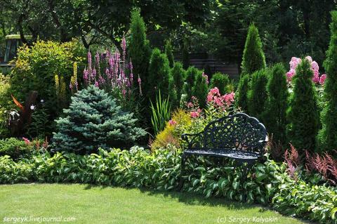 Частные питерские сады