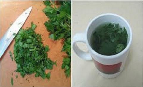 Это растение полезно для лечения ИМП без лекарств