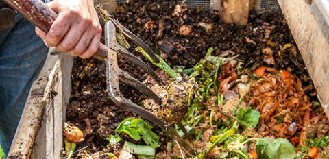 Как быстро сделать компост