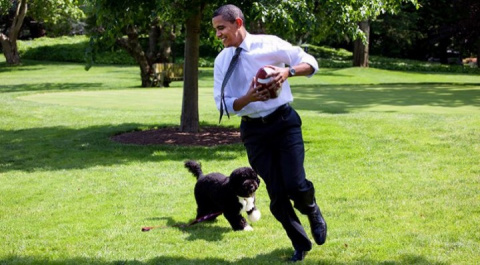 Жизнь после Белого дома: чем займётся Обама на пенсии