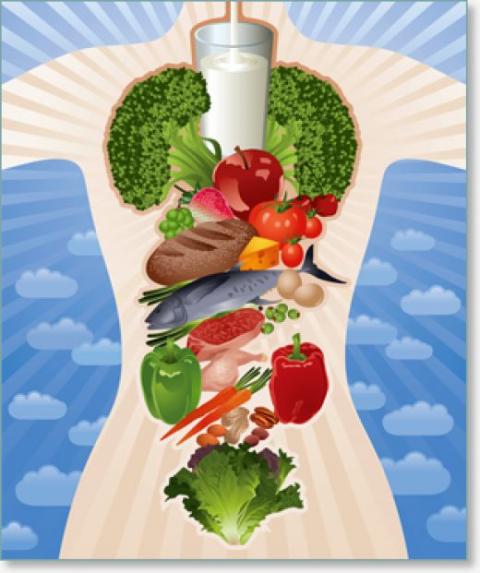 Продукты, снижающие и повышающие холестерин