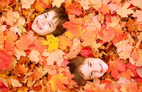 Какие праздники в октябре?