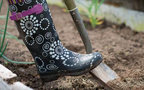 Подготовка огорода к зиме – все про осеннюю обработку почвы