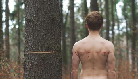 Живые души Деревьев
