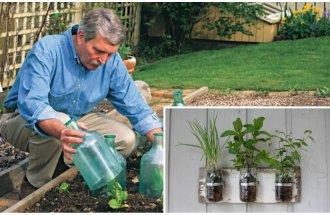 6 популярных садово-огородны…