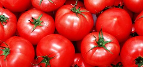 Как продлить срок хранения томатов до трех месяцев
