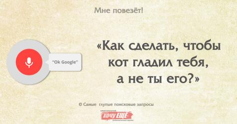 Ok Google. Самые глупые поис…