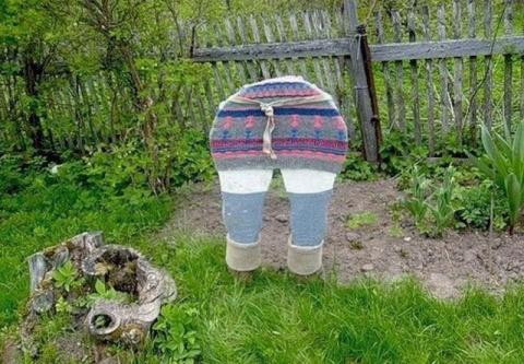 Прикольные идеи для дачи и сада