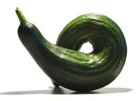 Скрутило огурцы! Что делать с зеленцами-уродцами?