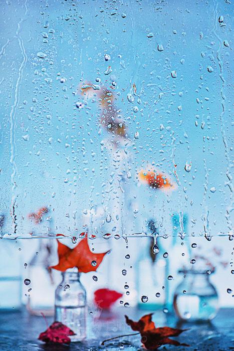 Чем занять себя дождливым ок…