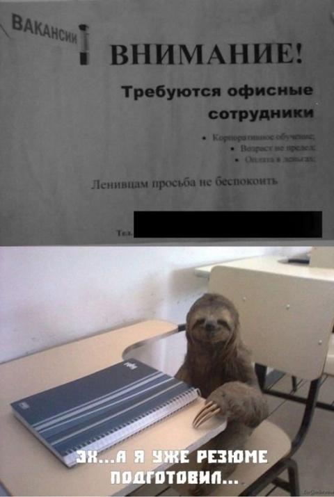 Забавные объявления (24 фото)