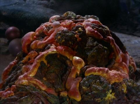 5 теорий о том, как могут выглядеть инопланетяне