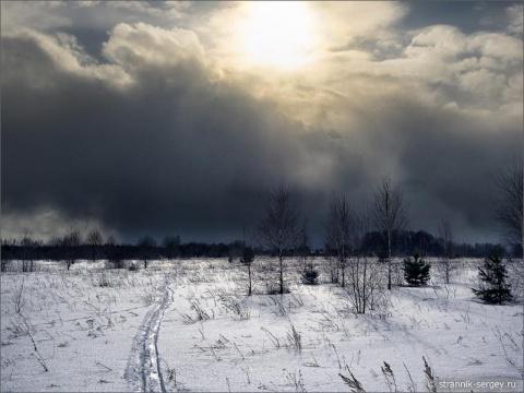 Весна света на полях, в лесу и деревне