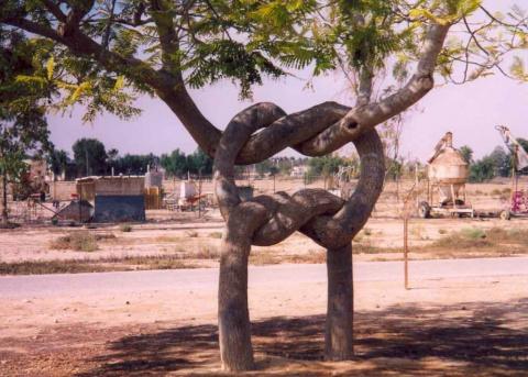 Деревья старого мастера