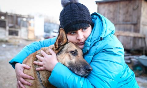 Собаки и люди (еще раз о Тве…
