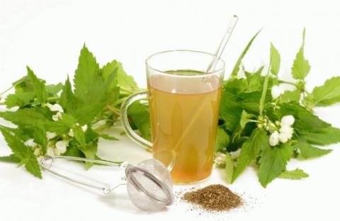 Лекарственные травы для лече…