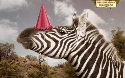 В Чили знают, как правильно встретить носорогов
