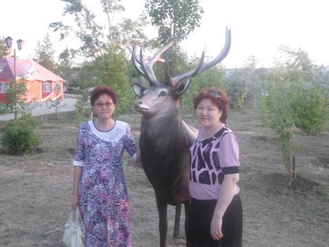 РСТЫ Кульшекбаева