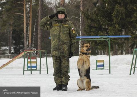 Министерство обороны РФ созд…