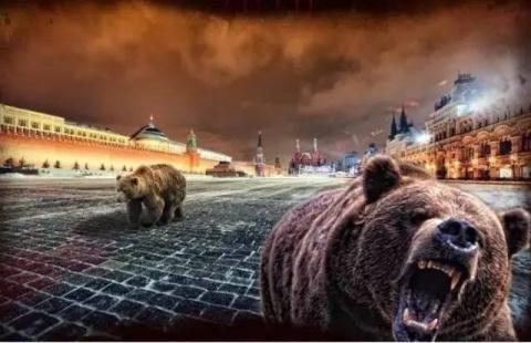 Посольство России предупреди…