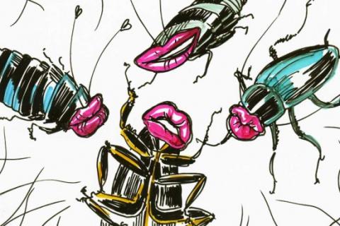 Испортить все: женские тараканы