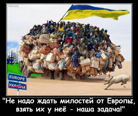 Украинцы обошли сирийцев по …