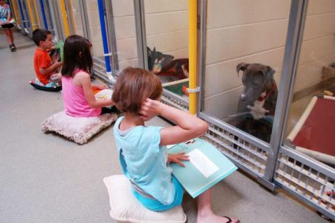 Дети читают вслух в приюте д…