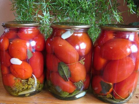 Начался сезон моих маринованных помидоров «Пальчики оближешь»