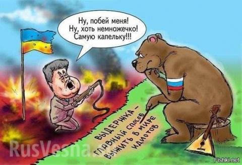 В белый свет: зачем Украина …