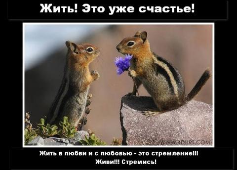 жить нельзя без позитива!!!!!!!