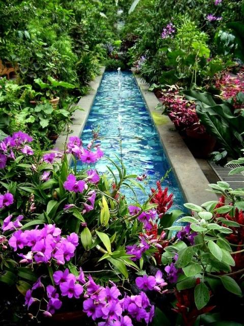 Декоративный пруд: красота и комфорт своими руками