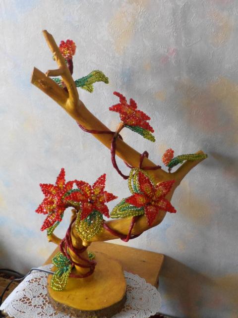 Цветущие коряжки