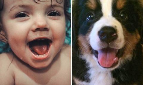 15 фотографий, на которых дети и животные выражают эмоции совершенно одинаково