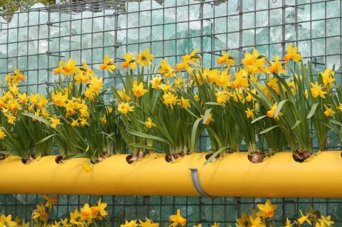 Удобные штучки для вашего сада