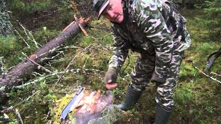 Костер в сыром лесу. Огонь б…